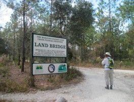 Entrance to the Land Bridge from Land Bridge Trailhead
