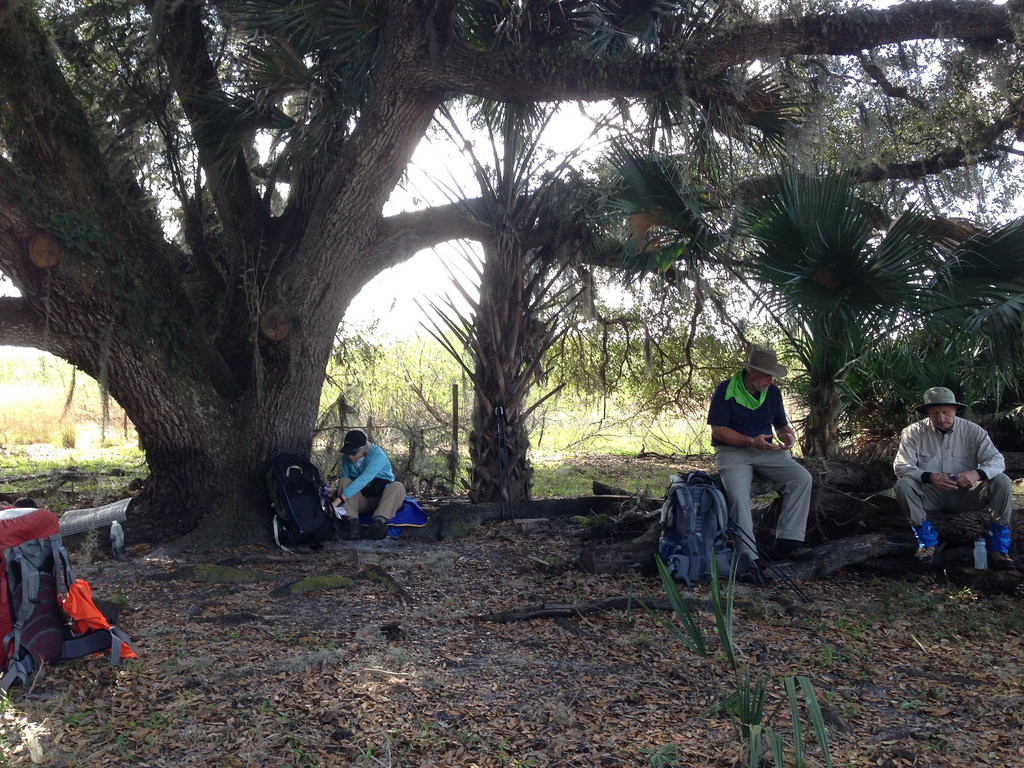 Taking a break under an ancient live oak