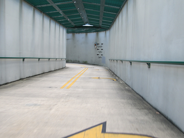 Trail tunnel on the Seminole-Wekiva Trail