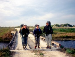 Seminole Reflections