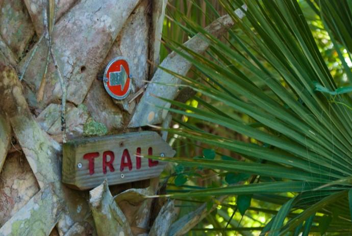 Follow the Trail!