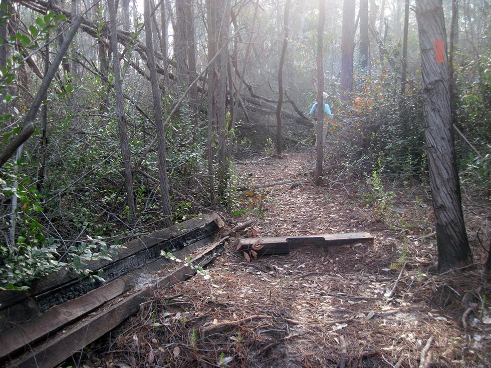 Burned-out bog bridge