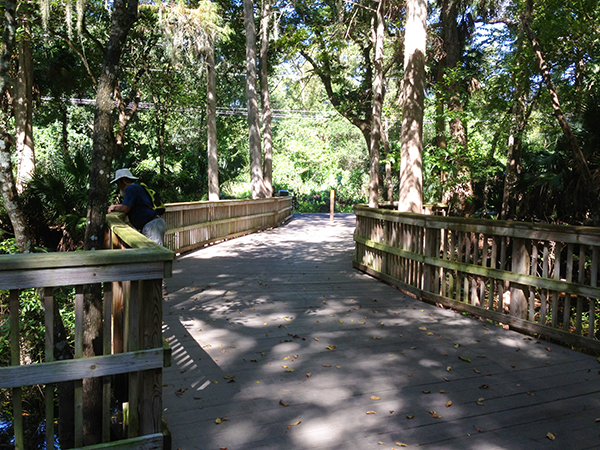 Boardwalk along the Spring-to-Spring trail